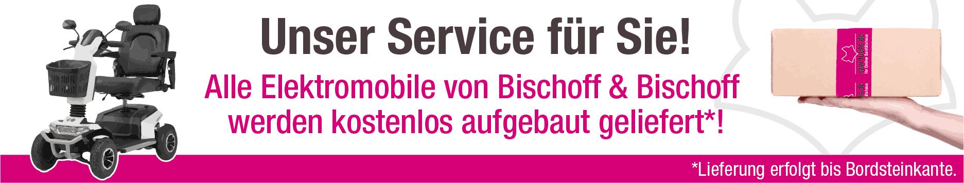 Bischoff-Bischoff-Elektromobile-fertig-aufgebaut